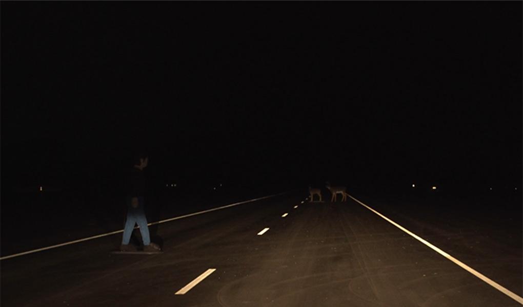 accord-headlights